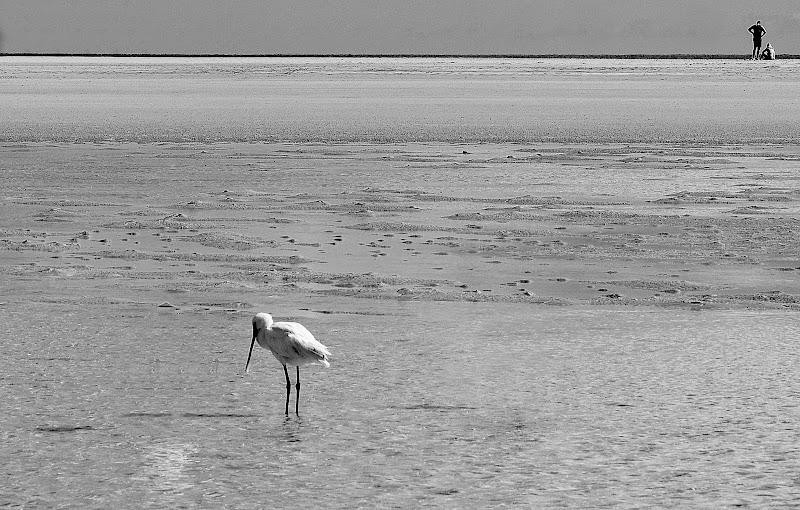 playa blanca di kaos