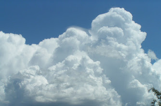 Photo: Fluff in the Sky!