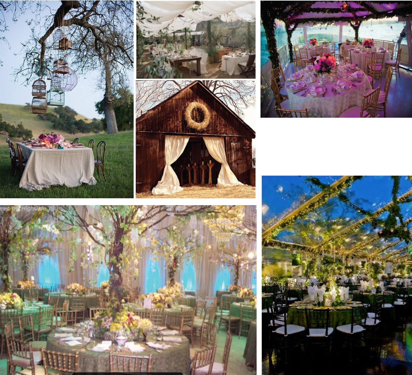 Jevon S Blog Enchanted Forest Themed