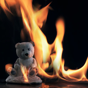 Burning Teddy by Jack Noble - Artistic Objects Other Objects ( jack nobre, pwcfire, canada, toronto, pcwfire, photography, fire )