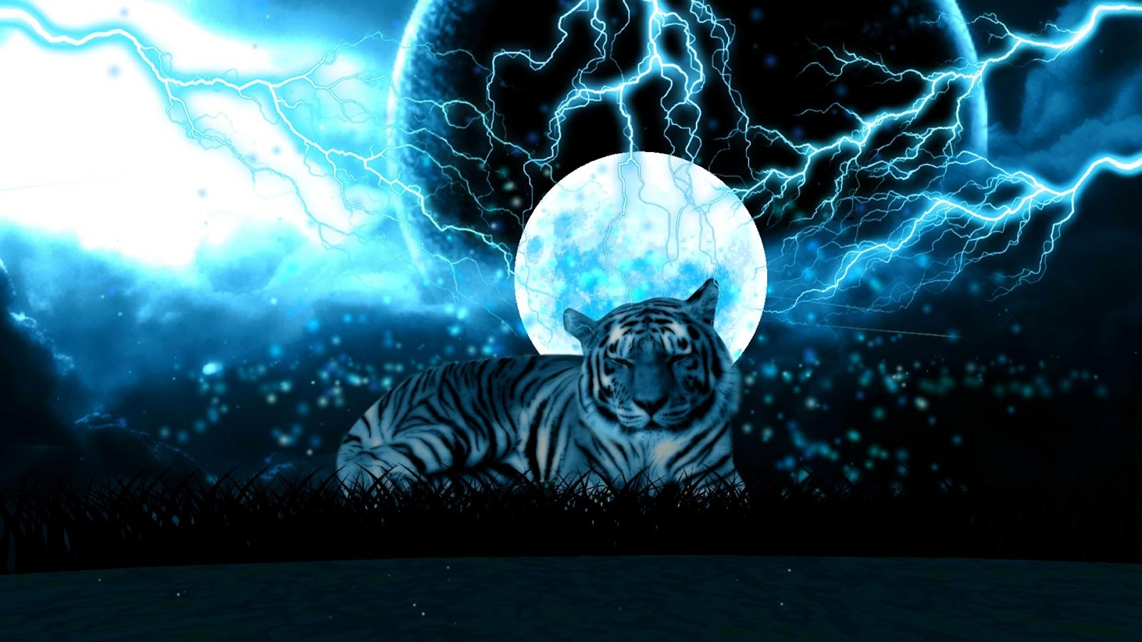 Amazing Tiger Wallpapers Best Of Hd For Desktop