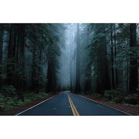 by Jessy Joplin - Transportation Roads (  )