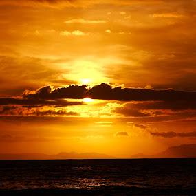 by Reon Rich - Landscapes Sunsets & Sunrises (  )