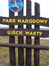 """Photo: W logo Parku Narodowego """"Ujście Warty"""" umieszczono wizerunek gęsi zbożowej."""