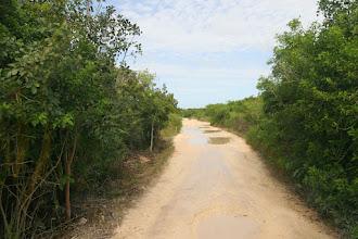 Photo: Der Weg aus dem Camp nach den Regenfällen