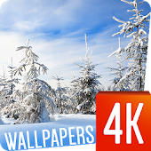 Winter wallpapers 4k