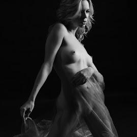 Nude by Csaba Kabátka - Nudes & Boudoir Artistic Nude ( beautiful, sony, bcs, 2015, bw, sexy, black and white )
