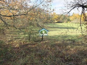 terrain à Trespoux-Rassiels (46)