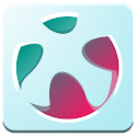 Soccer-News for Euro 2016 icon