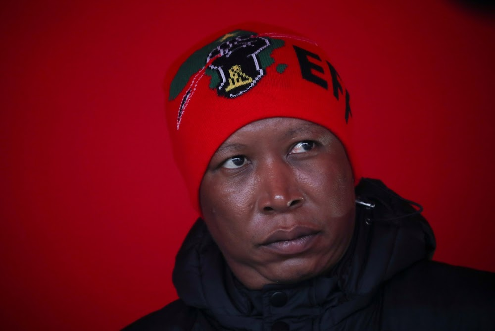 Malema's 'have as many as 10 kids' can only perpetuate cycle of poverty