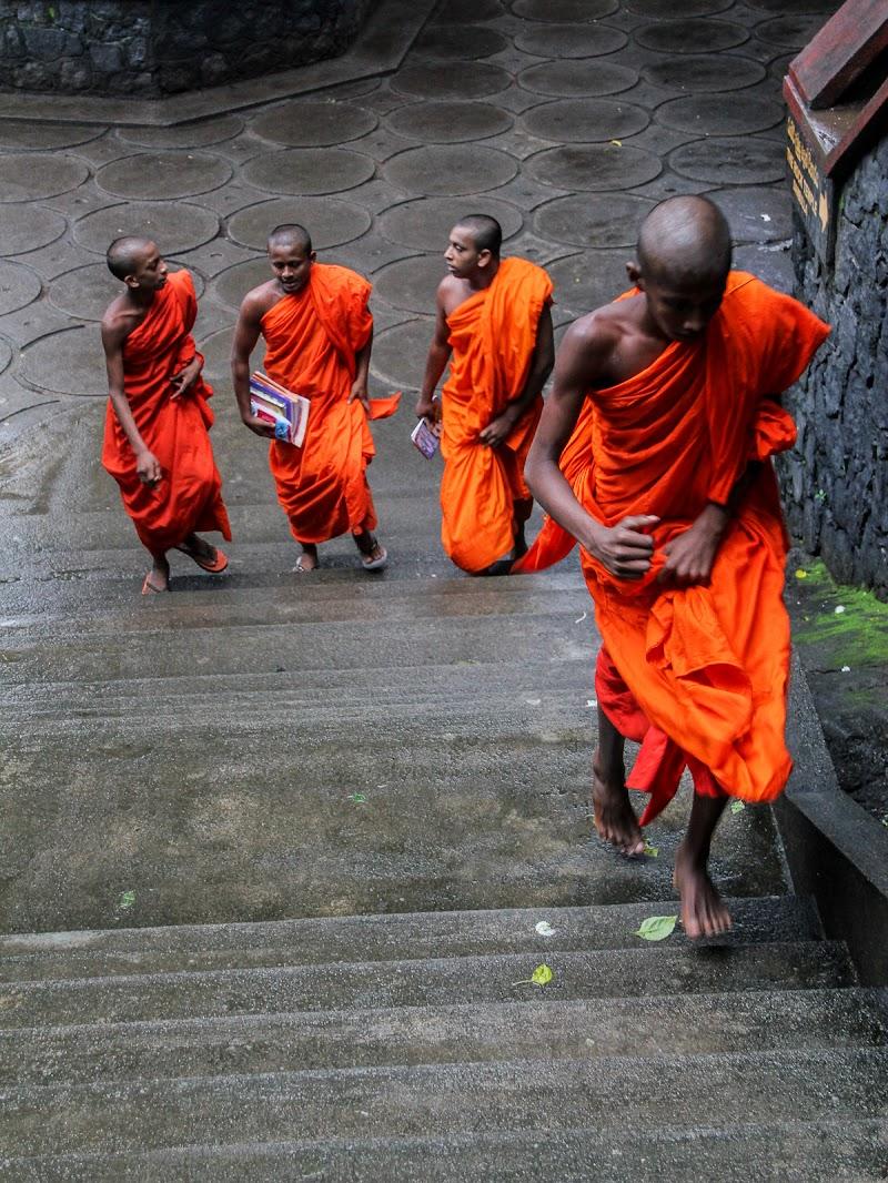 Orange in Sri Lanka di Simona Ranieri