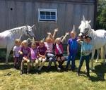 Summer Pony Camp : Alzu Weltmeyer Equestrian Club
