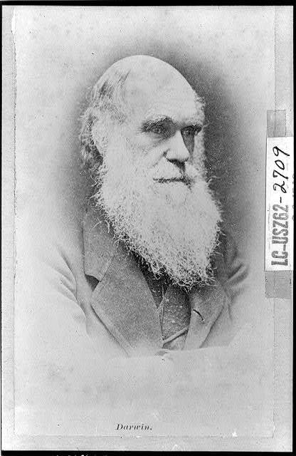 Charles Darwin, Credit Line: Library of Congress, Prints & Photographs Division, [reproduction number, LC-USZ61-104]