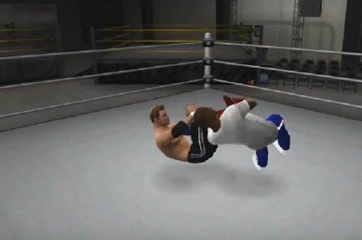 Fight WWE Style Training