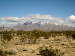 Photo: After a brief lunch, we take the road to the Kelso dunes. It had snowed on the high peaks on the previous night. It's surprising that snow survived the noonday sun (although it was pretty cold.)