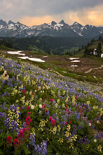Photo: This was taken while hiking with my wife and her parents. They came out to visit us in Portland just at the height of flower season on Mt Rainier. So we stayed up there for 1 night and did a mid day hike. This is a view of the Tatoosh range with a rainstorm brewing. It was a great day with the family.  Thanks for looking!
