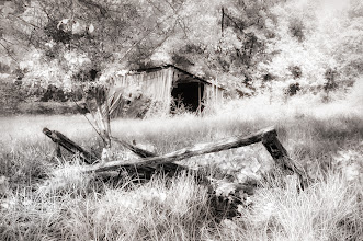 Photo: Abandoned Shed (Clive Haynes)