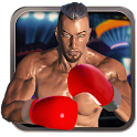 Real 3D Boxing Punch icon