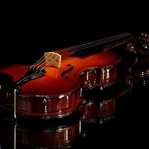Violin6 NR.jpg
