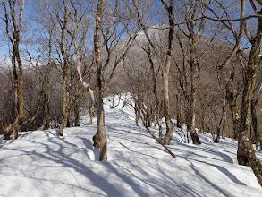 多志田山は雪に覆われ