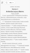 Libhayibheli LeliNgcwele - Bible in Siswati screenshot thumbnail