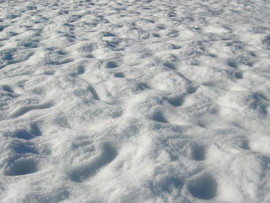 Come la neve di dan