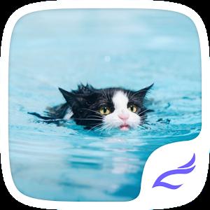 Swimming Cat Theme