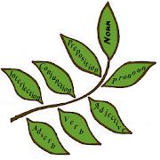 Parts of Speech Bengali