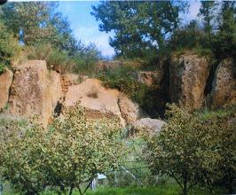 Photo: Fig. 4. Prospetto Tomba del Peccato, Faleri, foto (2005).