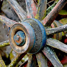 Wagon Wheel by Dave Feldkamp - Artistic Objects Other Objects ( worn, wagon wheel, wagon, weathered,  )
