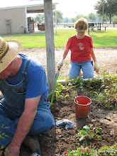 Photo: Ed Rains the plumber and Mary Rains the gardener.  HALS RPW  2009-0905