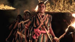 Africa's Amazons thumbnail