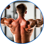 Back Workout Awesome Free 0.0.1 Apk
