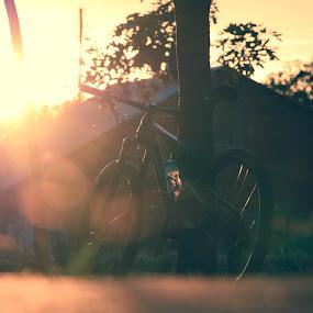 Sunset mountain bike by Nora Richards - Sports & Fitness Cycling ( mountain bike pics, sunset, merida, mountain biking sunset, mountain biking photos, mountain bike, beautiful sunset photos, merida ninety-nine 6000, merida ninety-nine )