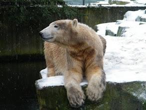 Photo: Eine freundliche Miene zum Schneeregen ;-)