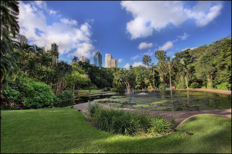 Escape from the urban hubbub by visiting the Brisbane Botanical Garden, Brisbane, Queensland.