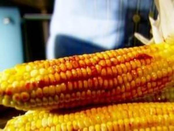 Roasted Corn With Chili Lime Butter Recipe