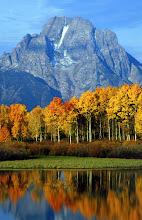 Photo: Oxbow Bend and Mt. Moran, Grand Teton National Park, Wyoming