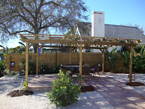 Photo: Pergola after grapevines planted