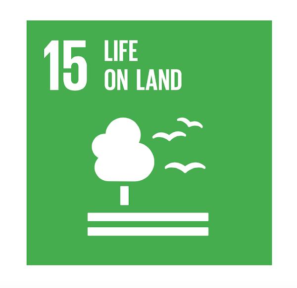 SDG 15 Life On Land