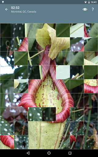 Jigsaw Puzzle: Flowers screenshot 23