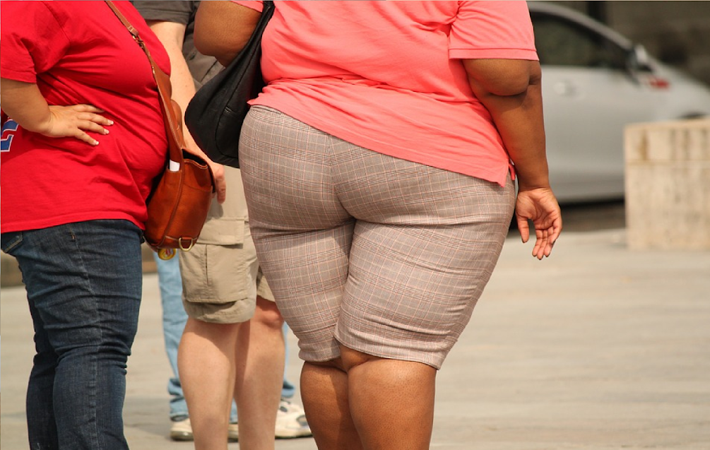 Phthalates And Other Chemical Exposure Can Cause Obesity