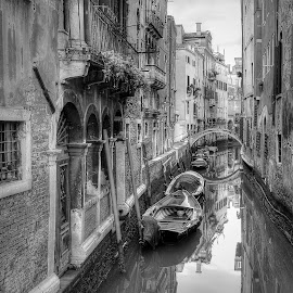 Quiet morning in Venice by Peter Kennett - Black & White Buildings & Architecture ( water, reflection, b&w, venice, boat, morning, canal,  )