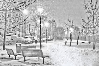 Photo: Snow Night  雪の夜 #MonochromeMonday curated by +Charles Lupica , +Bill Wood and +Hans Berendsen