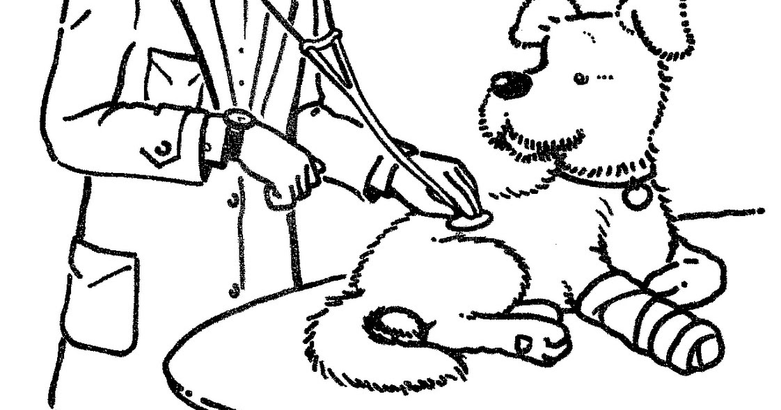 barbie pet vet coloring pages - photo#16