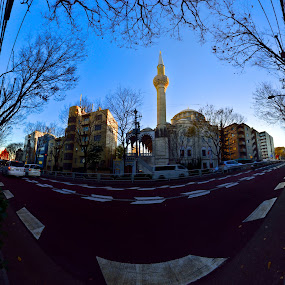 Tokyo Camii mosque by Kamal Kamaludin - Buildings & Architecture Architectural Detail ( mosque turkey istanbul islam turkish religion architecture ottoman religious muslim travel islamic minaret culture tourism old building sultanahmet blue dome famous history light landmark sultan europe hagia historic sophia )