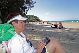 Photo: Robin chills, Fourmile beach, Port Douglas, QLD.