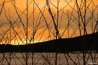 Photo: Today's sunset from Norway  #DawnOnSunday curated by +Ray Bilcliff