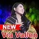 Pamer Bojo Via Vallen Full Album 2019 (lite) icon
