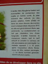 Photo: bains jaunes Soufrière